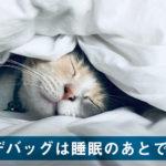 デバッグは睡眠のあとで。